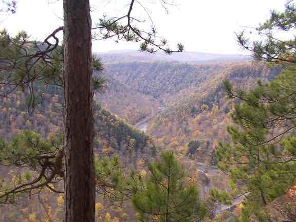 Pennsylvania Grand Canyon Pine Creek Gorge Leonard Harrison and Colton Point hiking 