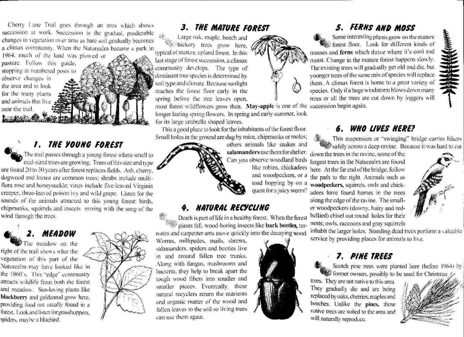 Cherry Lane Trail Brochure 2