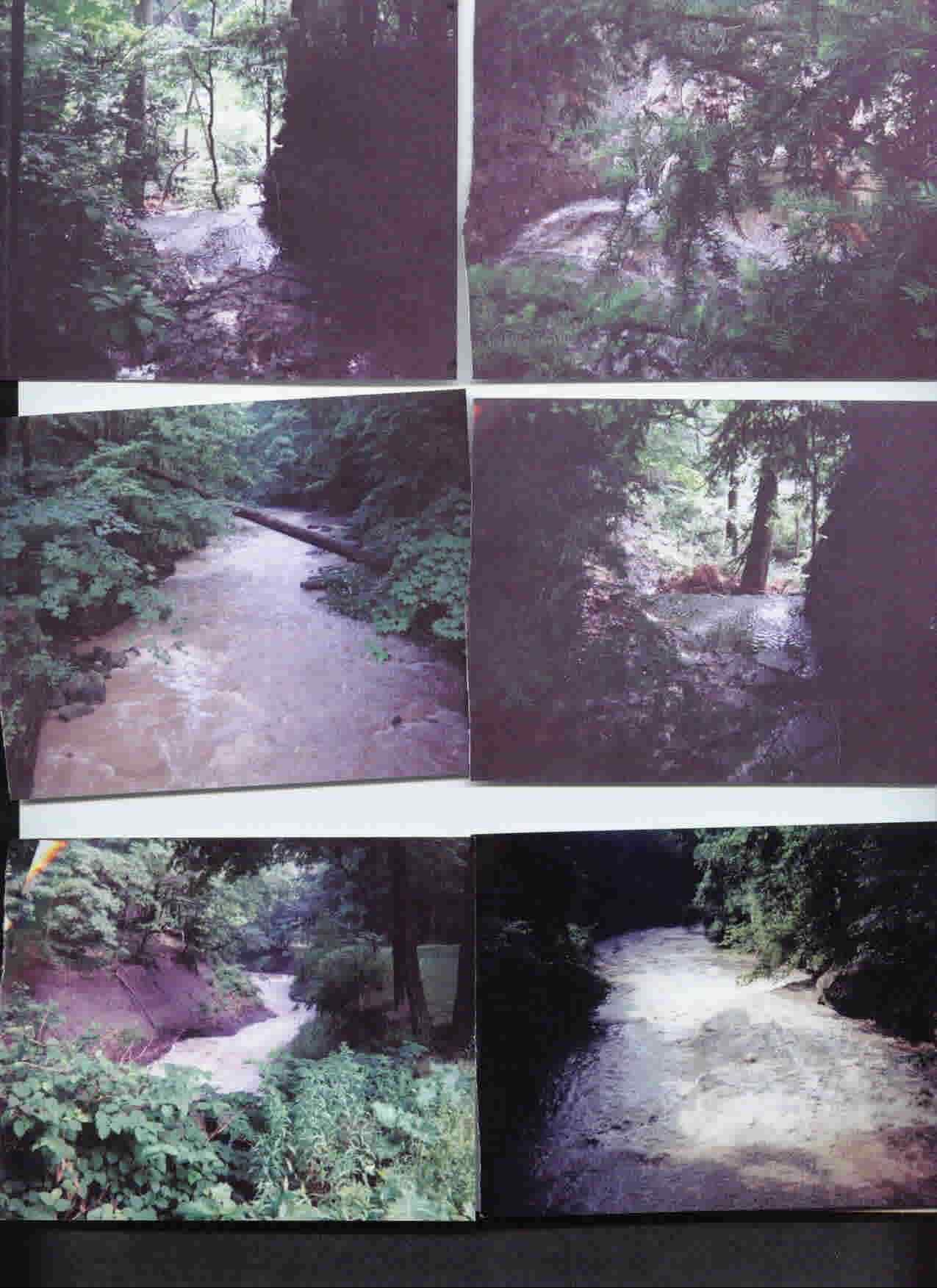 Euclid Creek Reservation Hiking Pictures