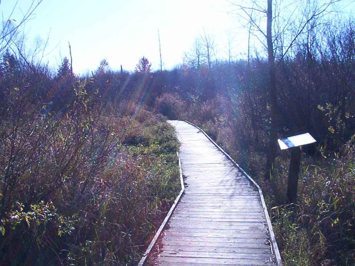 All Quail Hollow State Park Hiking Trail Pictures In Order