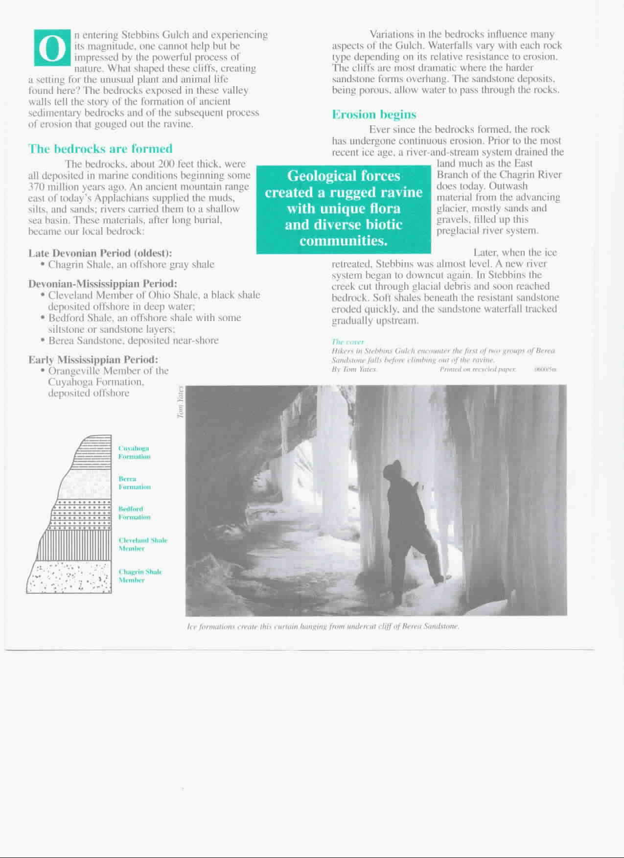 Stebbins Gulch Brochure Part 2