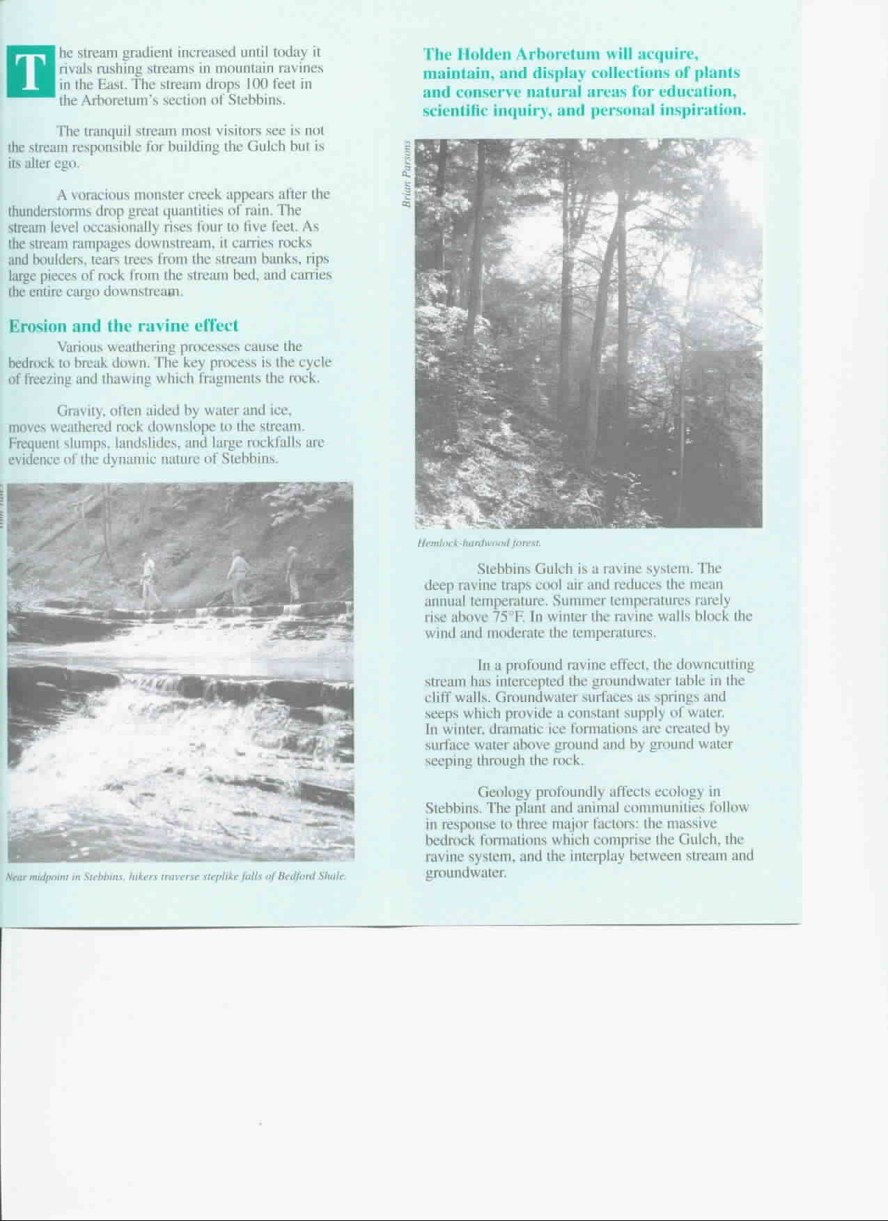 Stebbins Gulch Brochure Part 3