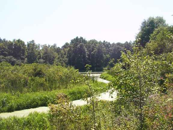West Branch State Park Hiking Trails Pictures Movie