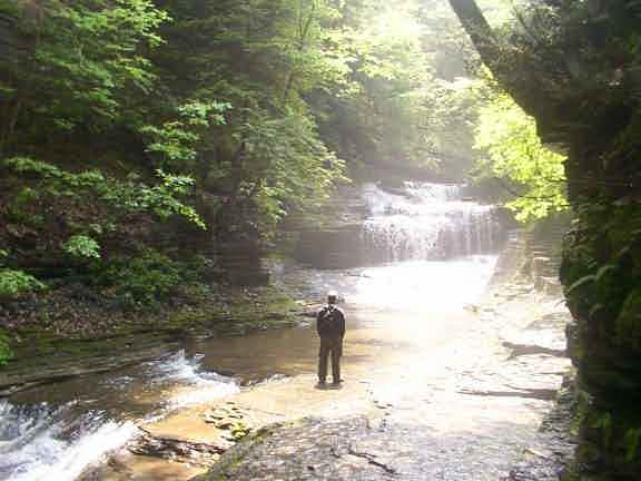 Buttermilk Falls State Park Pictures Movies Map