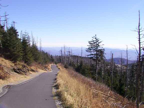 Clingmans Dome Pictures And Movie Hike