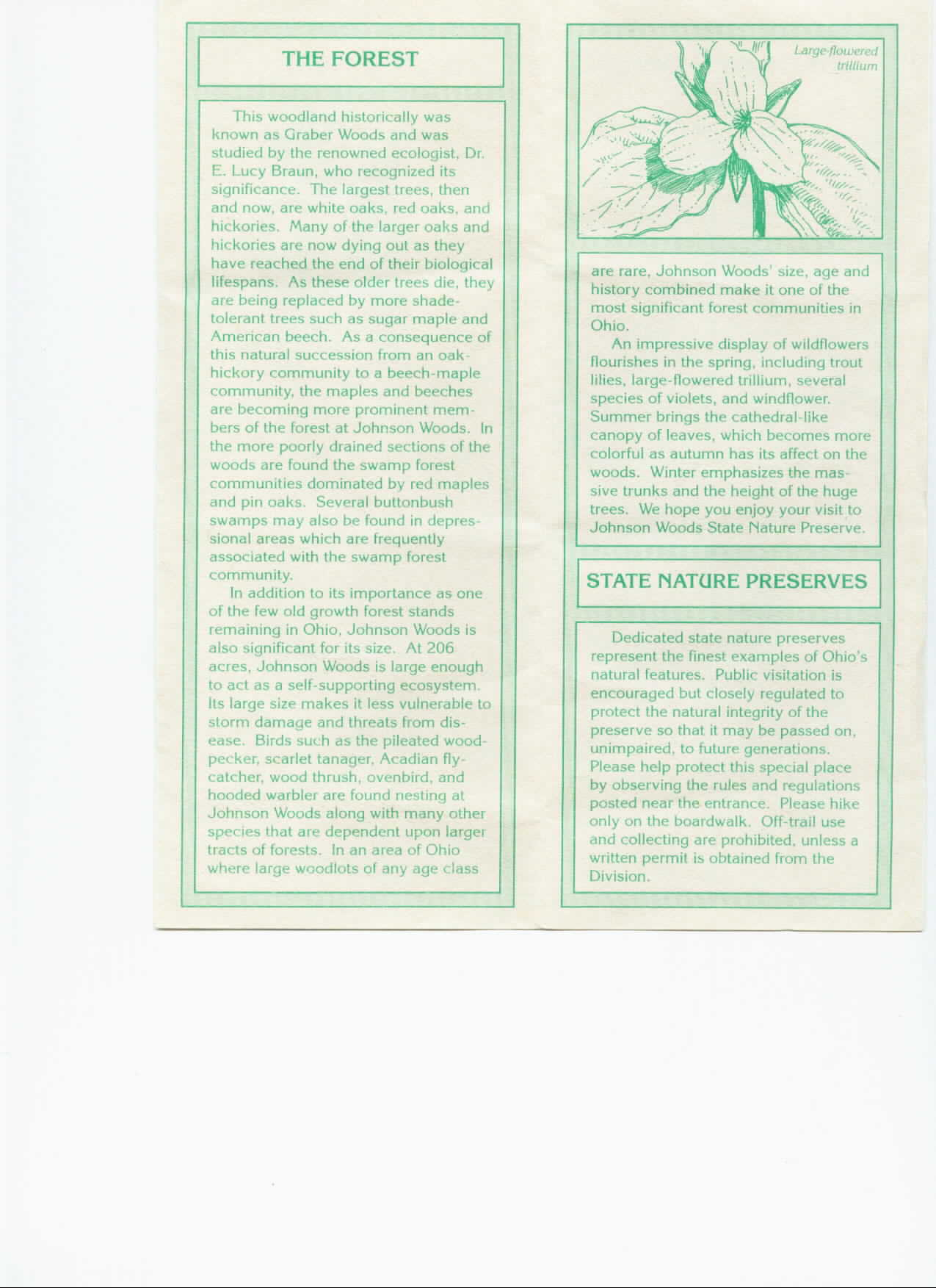 Johnson Woods Information Brochure Part 3