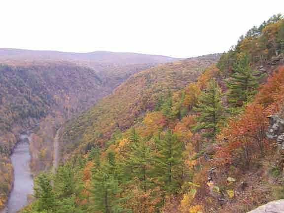 ed06c158abaa3f Pennsylvania Grand Canyon Pine Creek Gorge Leonard Harrison and ...