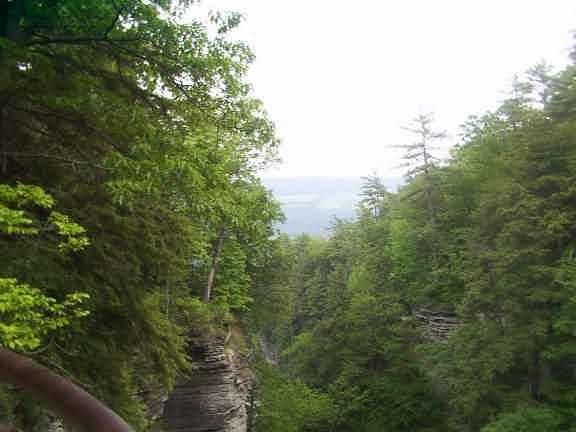 Finger Lakes Region New York State Parks Watkins Glen Vista Hiking Pictures Movies